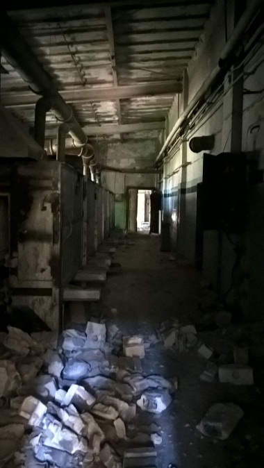 Empty Hallway of my Mind